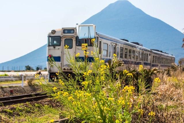 kagoshima-travel44